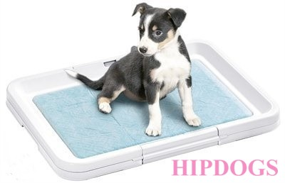 Puppy Potty Hondentoilet