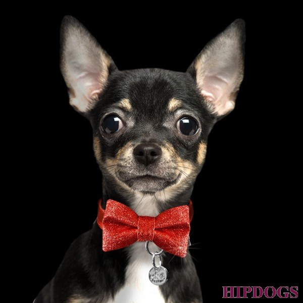 Milk & Pepper Bow tie rood