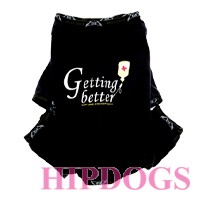 Puppy Angel Smart Recovery Suit Getting Beter