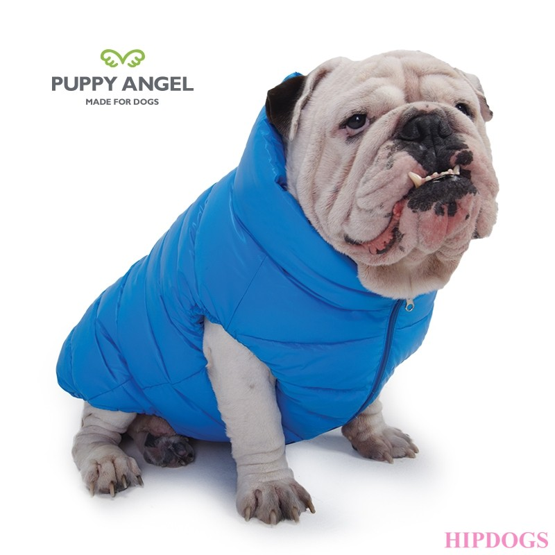 Puppy Angel Bulldog jas Dog Down Padding Vest blauw.