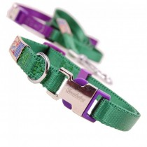 Nylon halsband & riem. Set green/purple