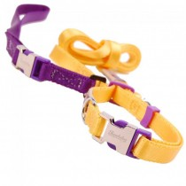 Nylon halsband & riem. Set yellow/purple