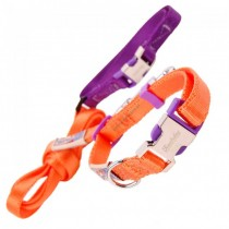 Nylon halsband & riem. Set orange/purple