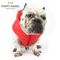 Puppy Angel Bulldog jas Dog Down Padding Vest rood