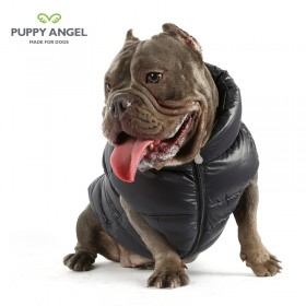 Puppy Angel Bulldog jas Dog Down Padding Vest black